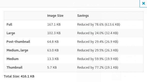EWWW Image Optimizer Cloud- Optimization detalise