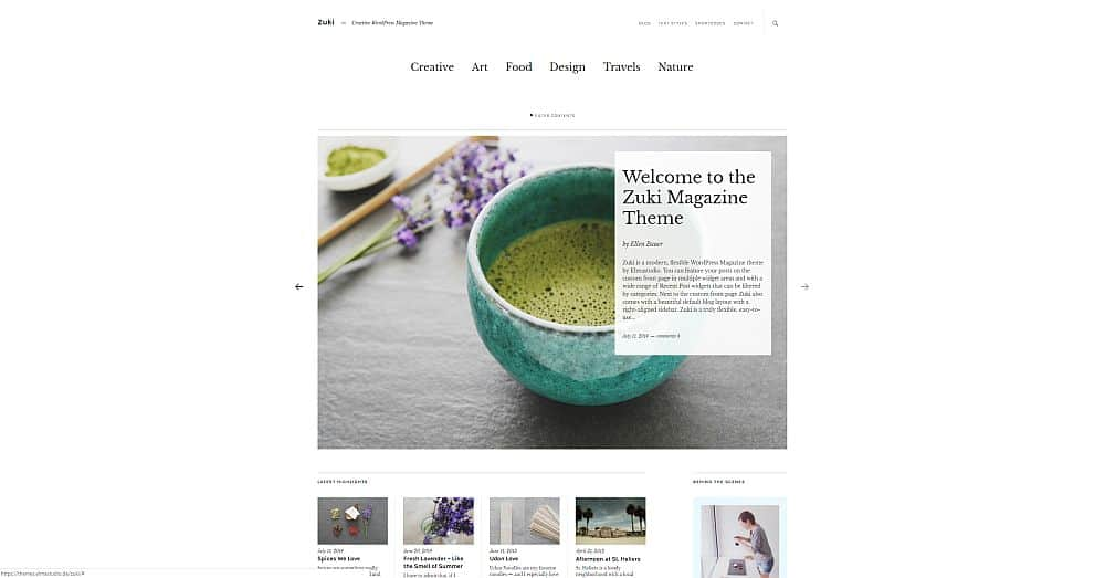 WordPress Themes - Zuki