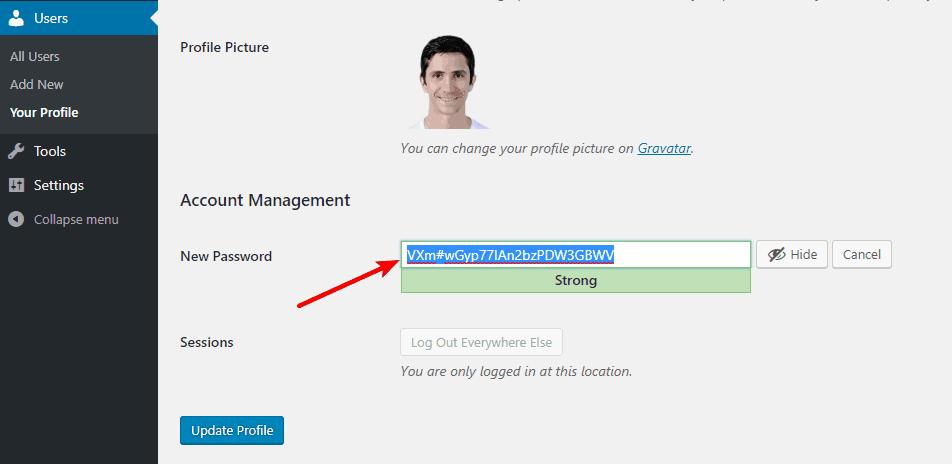 WordPress password generator