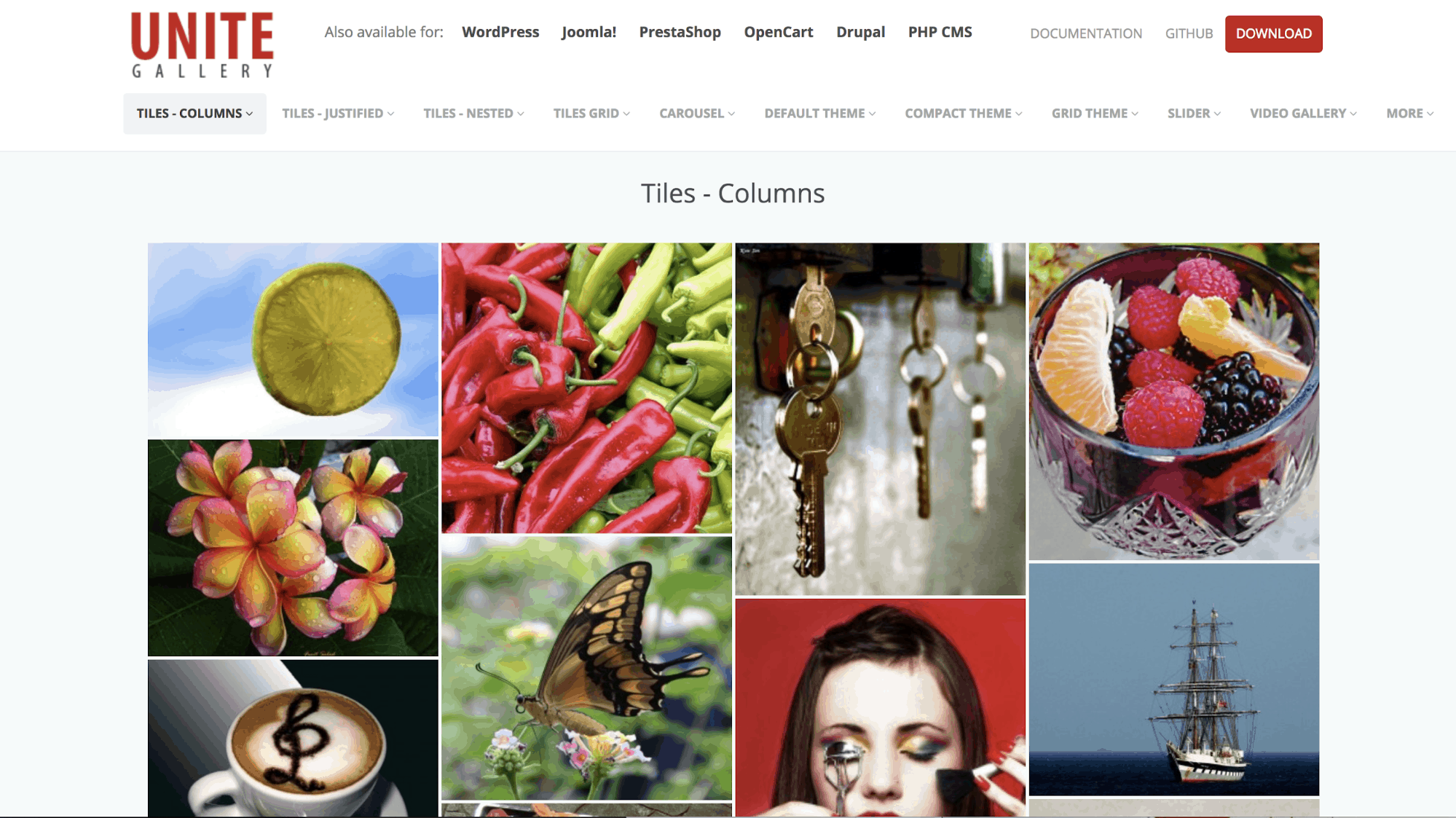 Unite Gallery Plugin- Best WordPress Photo Gallery Plugins